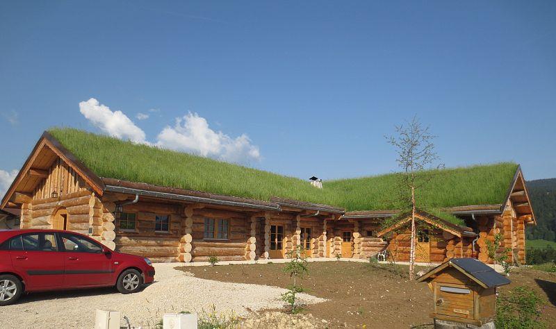 Ce qu'il faut savoir de la toiture végétalisée