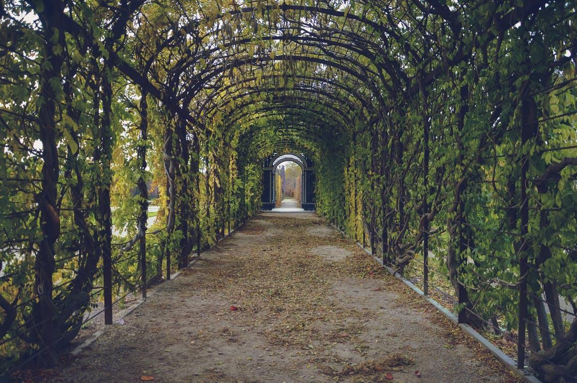 Les bordures de jardin : faire le bon choix