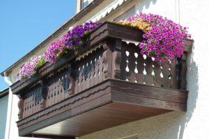 Les 6 meilleures plantes d'ornement pour votre balcon