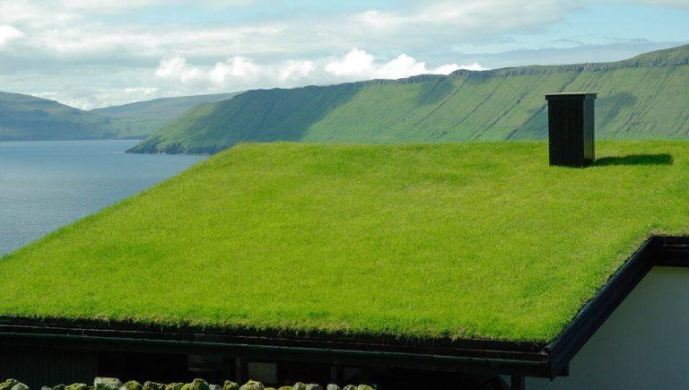 Les renseignements que vous devez savoir à propos du toit végétal