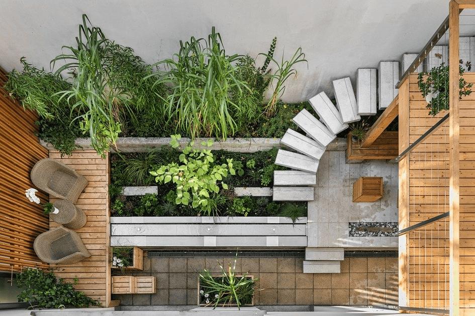 terrasse en bois avec des plantes