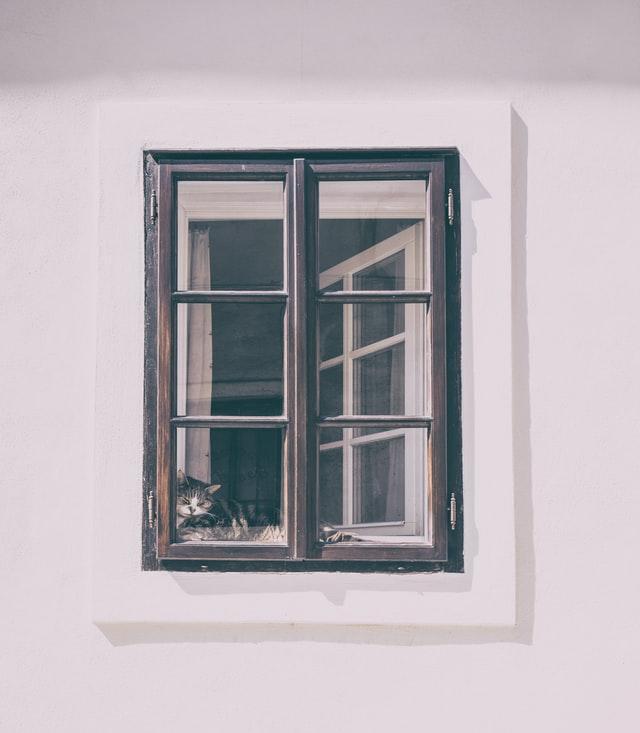 châssis de fenêtre